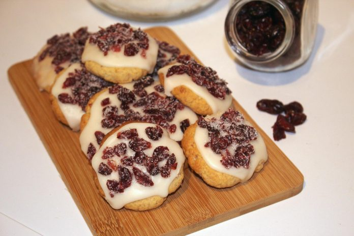 cookie cranberry américain